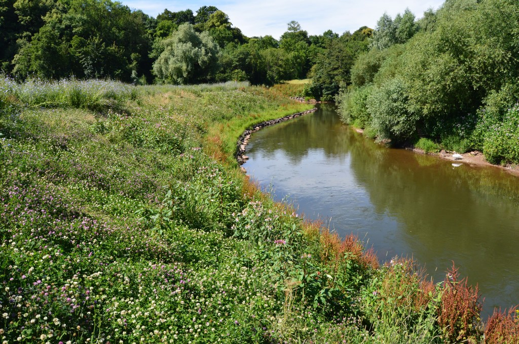 River Teme 18 months after completion