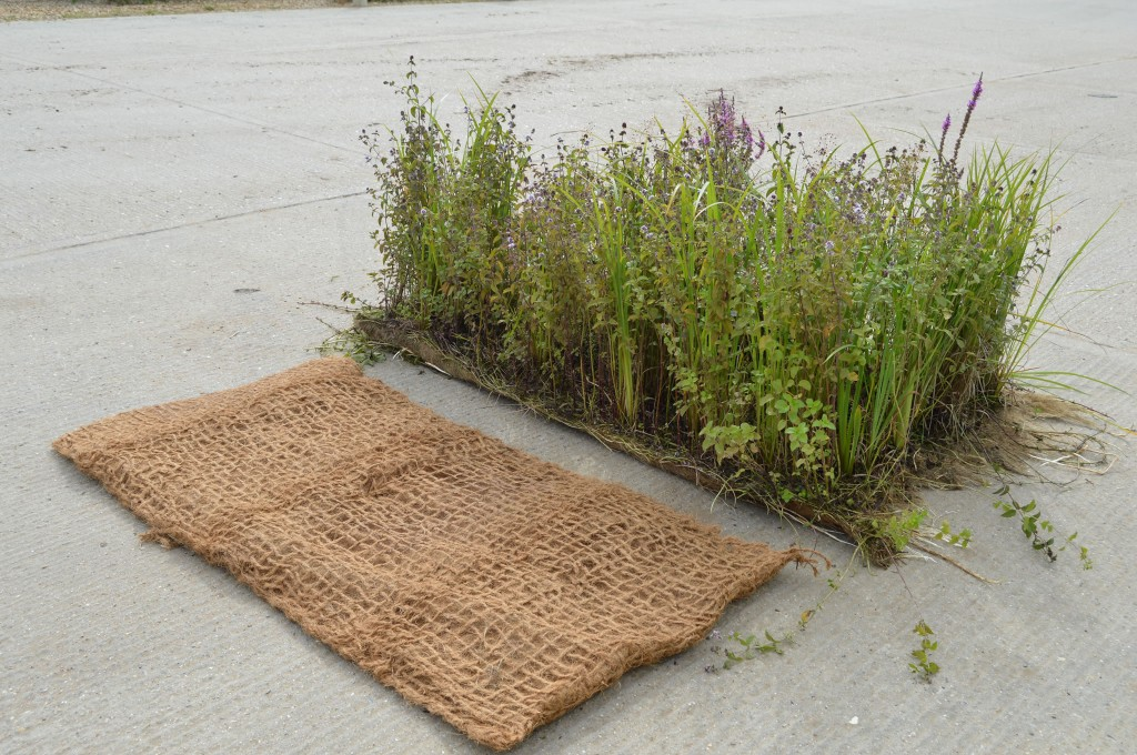 Standard Mix Pre-Established 2mx 1m Coir Pallet and 2m x1m Unplanted Coir Pallet