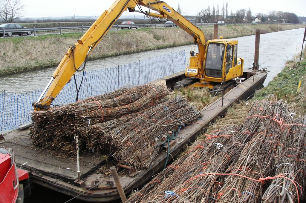 Brushwood Faggots Delivered By Barge