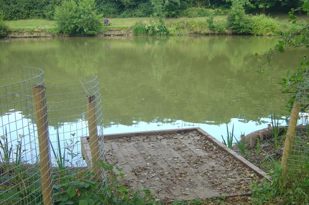 Fencing Protects Planting Between Fishing Platforms