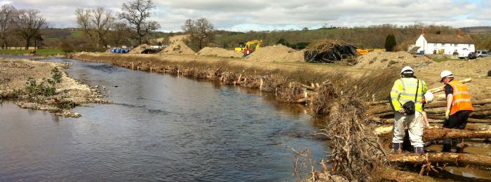 Rescuing the River Rhiw
