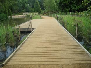 Richmond Park Boardwalk and planting