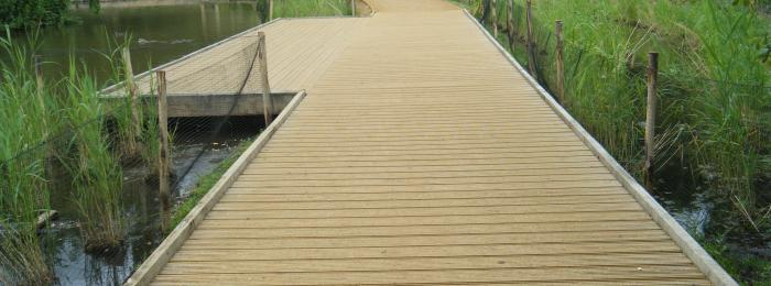Richmond Park Boardwalk built by our in house construction team