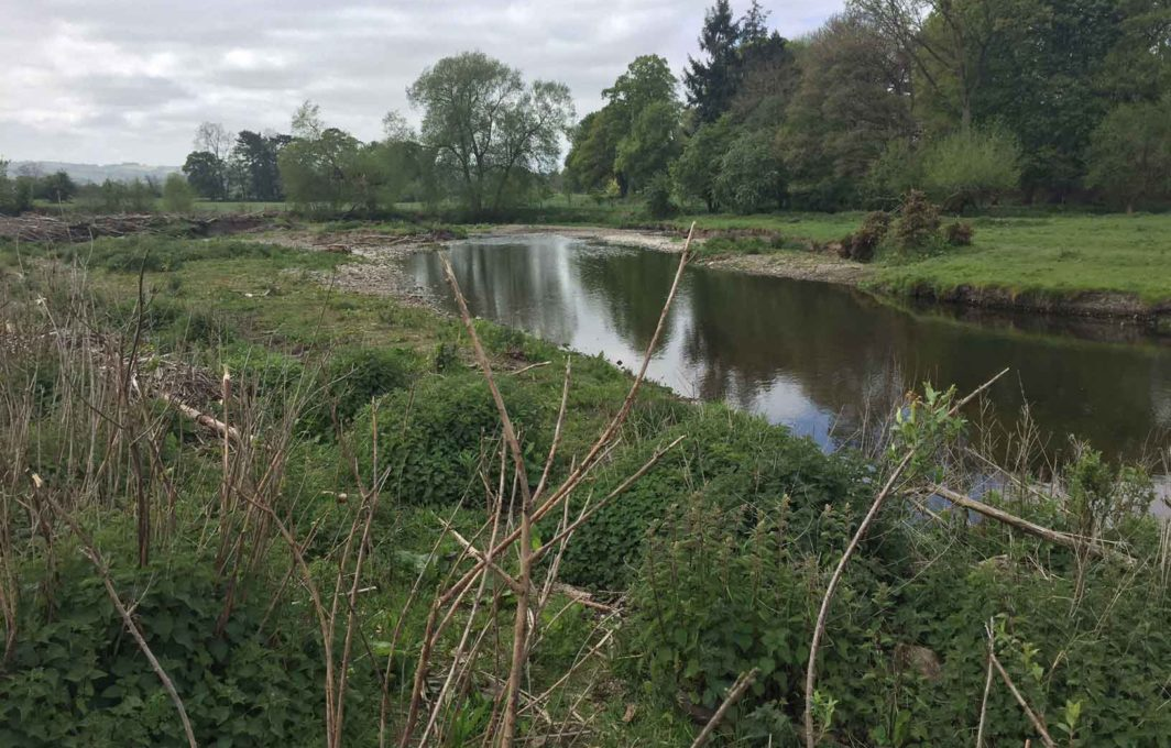 River Rhiw in 2017