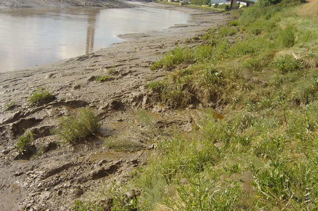 Inter-tidal riverbank erosion