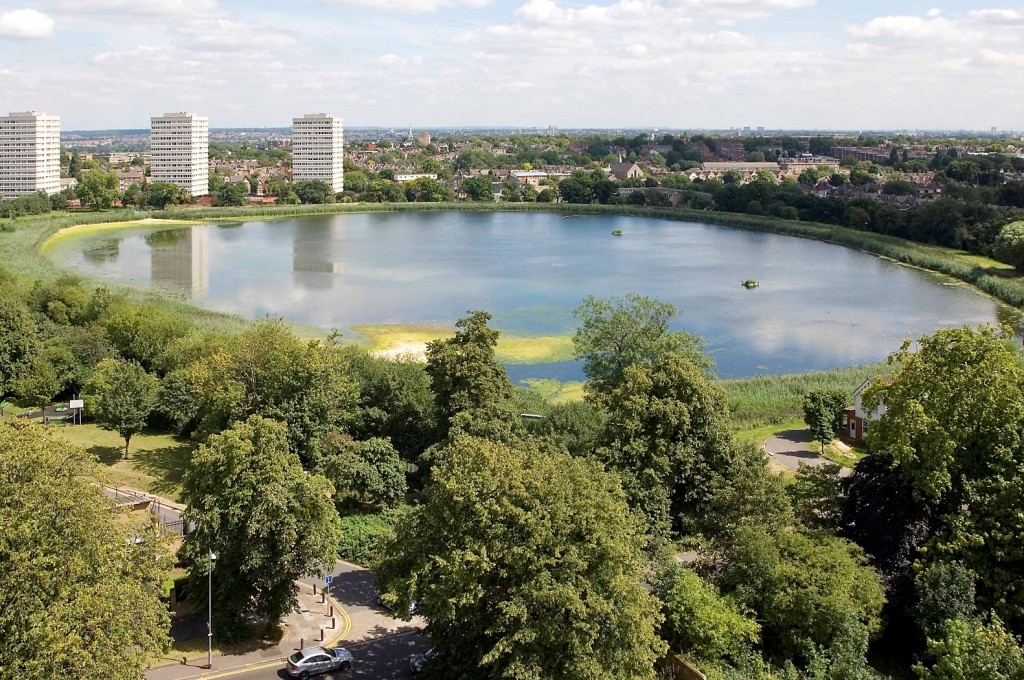 Woodberry Wetlands from the air