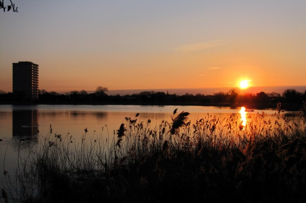 Woodberry-wetlands-sunset