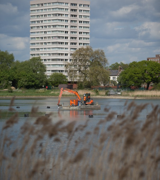 Woodberry skyline as we create new wetlands
