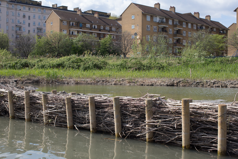 Brushwood fencing to create new wetlands and reedbeds