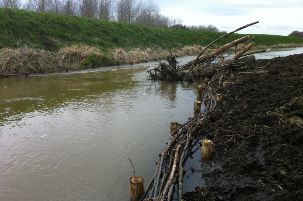 Brushwood and Large Woody Deflectors on the River Nar 2015