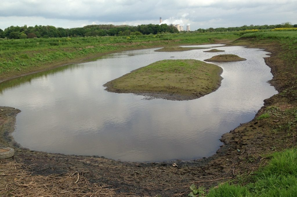 Pond prior to installation of Coir Pallets - photos by Carys Hutton
