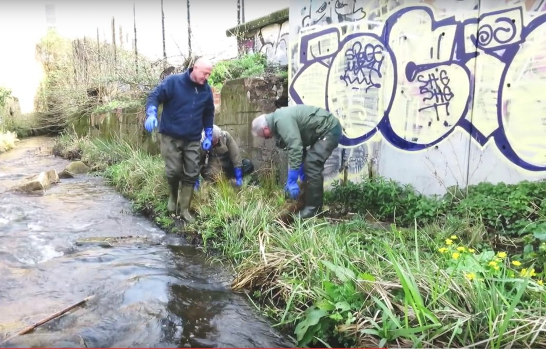 Pre-established Coir in situ providing cover for fish. ImagesWild Trout Trust
