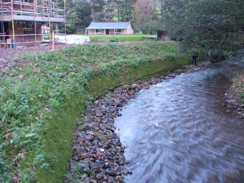 FlexMSE installation on a steep bank vegetated