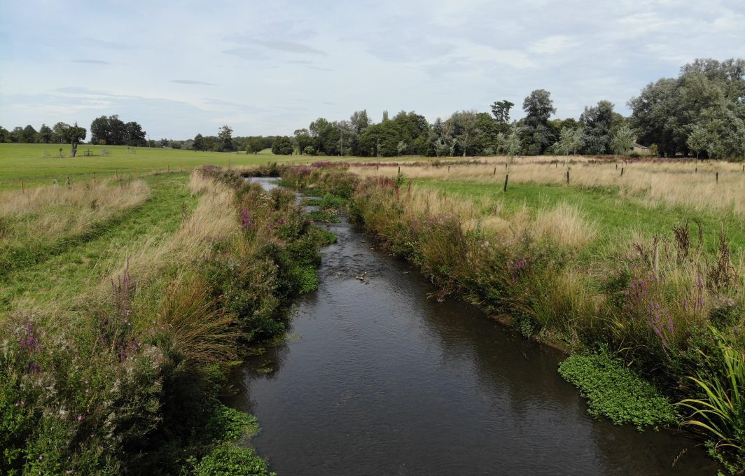 Phase 2 of the project improved fish passage by creating a range of chalk stream habitats and split the flow of the River Beane